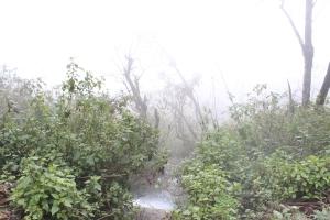 Persistent fog