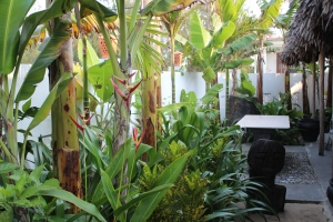Garden at An Bang Beachhouse