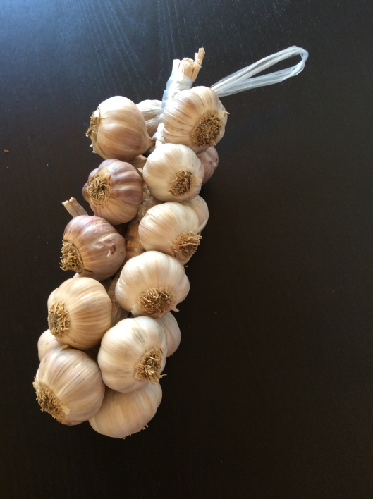 Beautiful garlic from the market