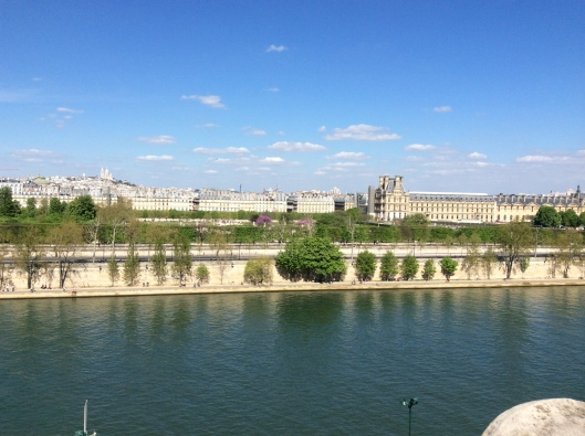 Orsay museum view from top
