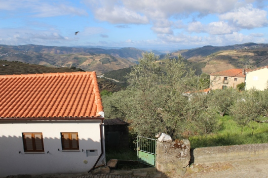View from our room, Tralhariz (Douro)