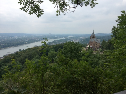 View of castle and Rhine River from hike (Bonn, Germany)