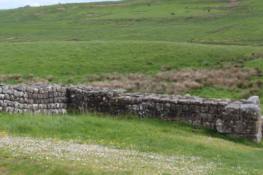 Hadrian's Wall, detail