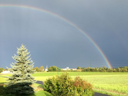 Perfect rainbow to end a perfect day.