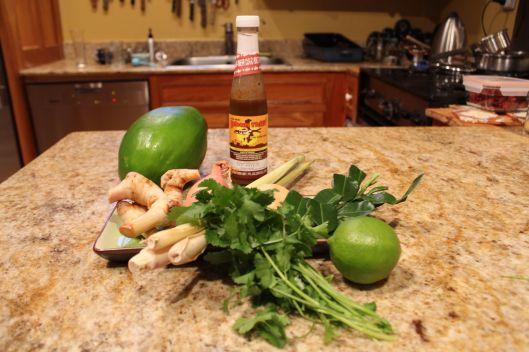 Green papaya, fish sauce, kha, lemon grass, cilantro, palm sugar (kind of hidden), kaffir lime leaves, lime