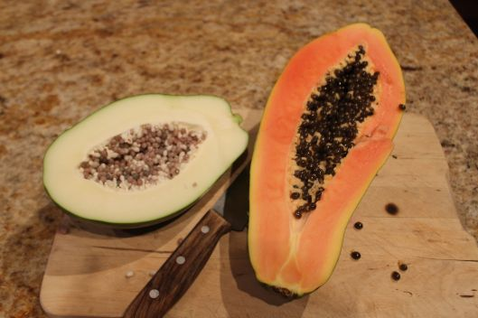 Green papaya on left, ripe papaya on right