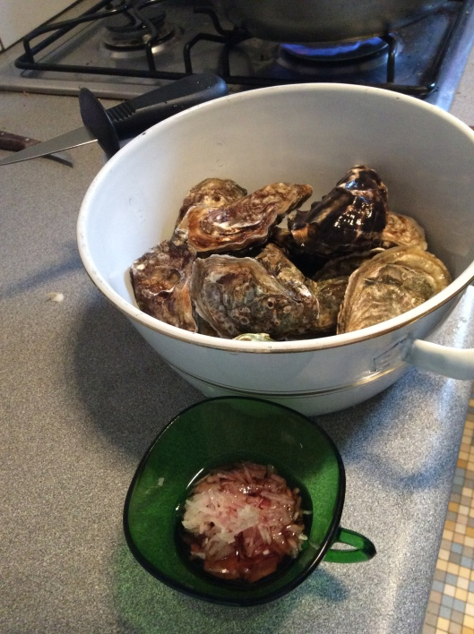 Monday is Lastborn's cooking night.  She is a true foodie and LOVES oysters.