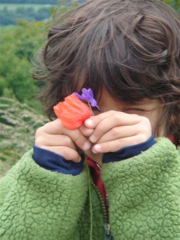 Young Paris with a poppy