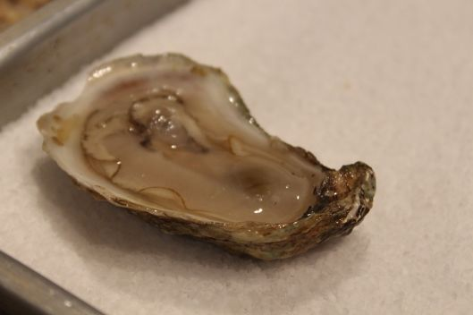 Perfect oyster on a bed of rock salt.