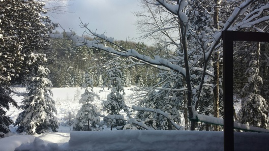 Remind me why we're going to Sugarloaf when it looks like this around our place...