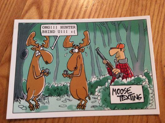 A little Maine humour...