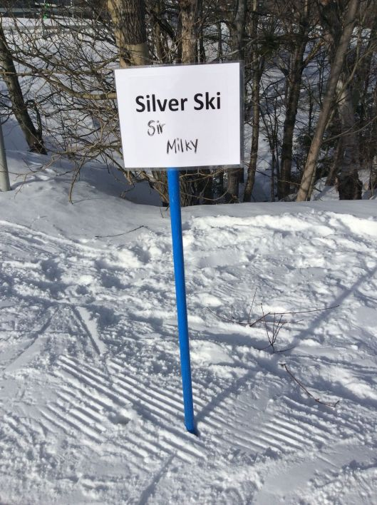 If your child is an advanced skier, Sir Milky will have him/her skiing the glades.