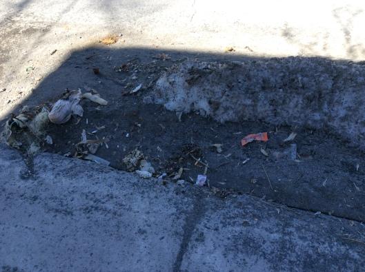 hb sidewalk garbage2