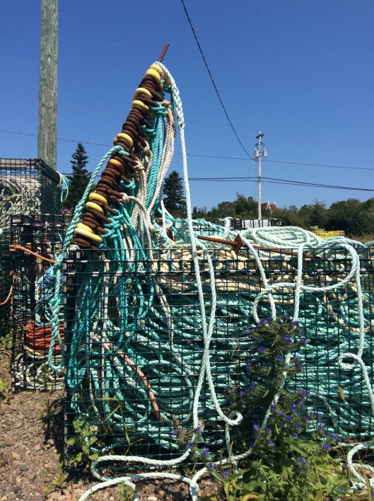 lobster traps3
