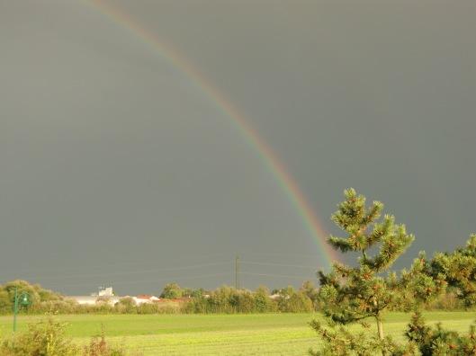 Rainbow in Upper Austria (photo taken by Lifelongfriend)