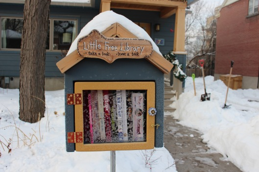 little free library1
