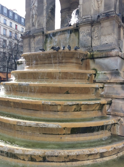 pigeons on fountain